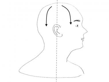 Drainage patterns of the scalp.