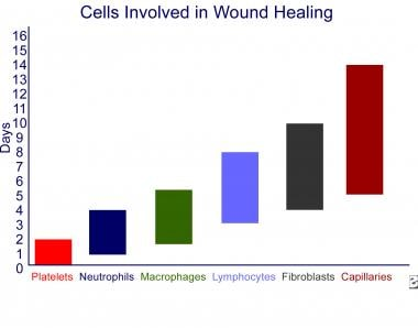 Wound healing and growth factors. Cells involved i
