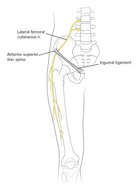 Location of lateral femoral cutaneous nerve.