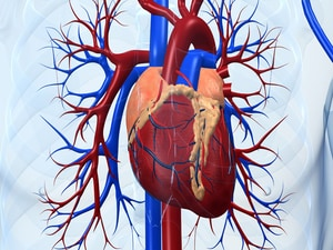 COMPLETE: Better Outcome With PCI in Nonculprit Lesions After STEMI