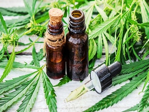 Medical Cannabis Safe, Effective in the Elderly